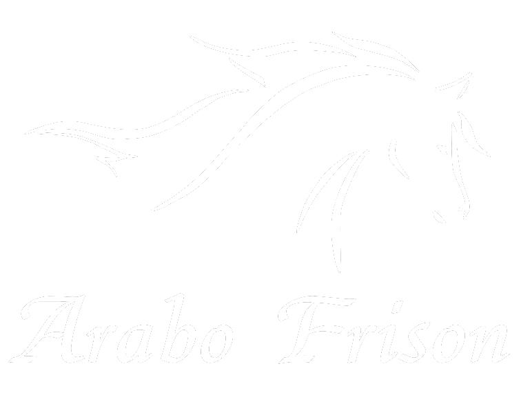 Haras du Vallon des Crins Noirs